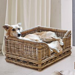 Hondenmand Gorron