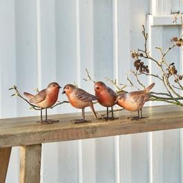 Vogel set van 4 Siblings