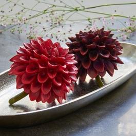 Decoratie bloem set van 2 Dahlien