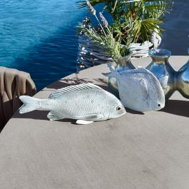 Vis, set van 2 Maleko
