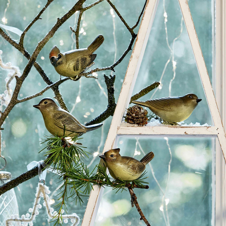 Vogel set van 4 Pompaire