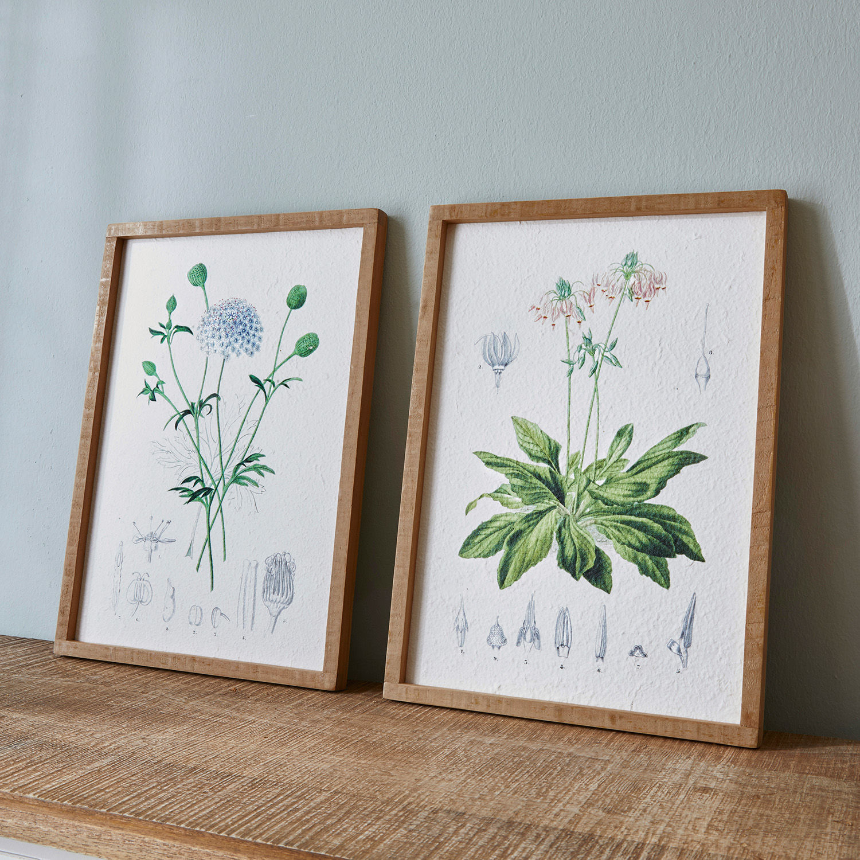 Afbeelding set van 2 Botanic
