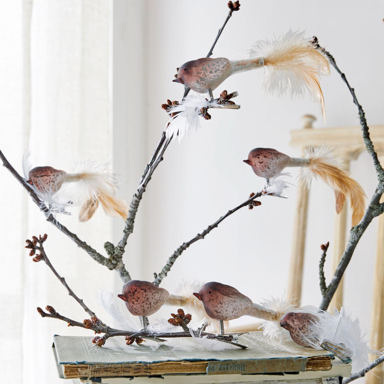 Vogel, set van 6 Ceallach