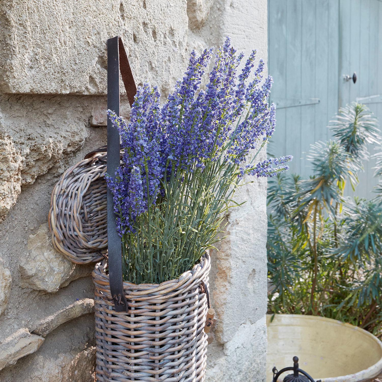 Sierbloem set van 6 Lavender